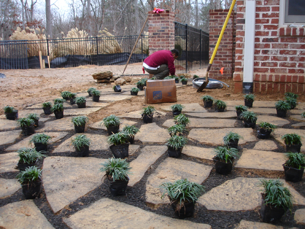 Roswell backyard transformation jones pierce for Inexpensive patio solutions